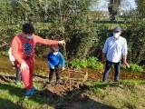Plantação de seis amieiros assinala Dia da Floresta Autóctone
